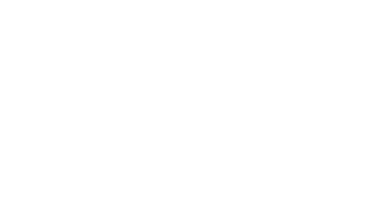 Team Walleye Guys Guide Service